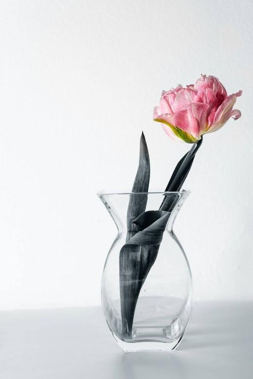 Покривка Іван - Квітка 2